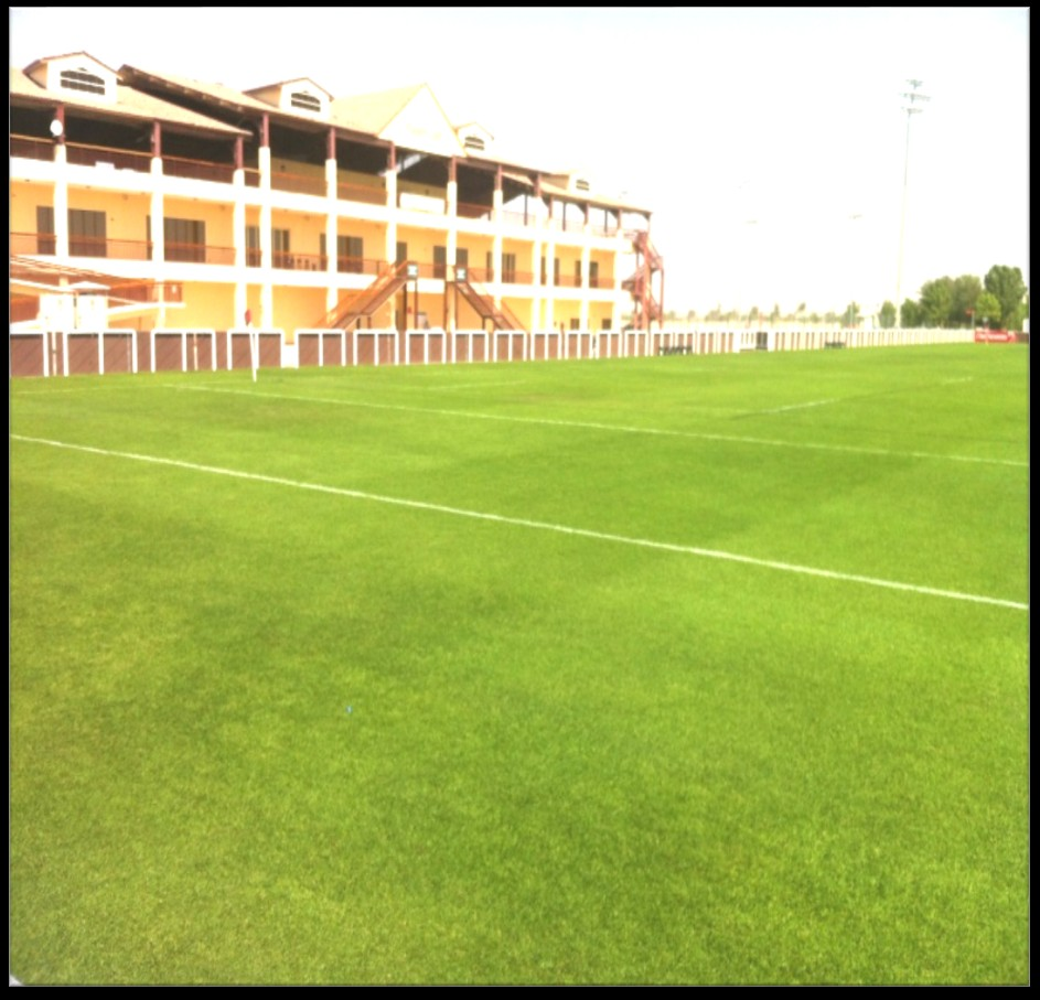 LANDSCAPING WORK AT RUGBY PITCH #3 FOR EMIRATES GROUP